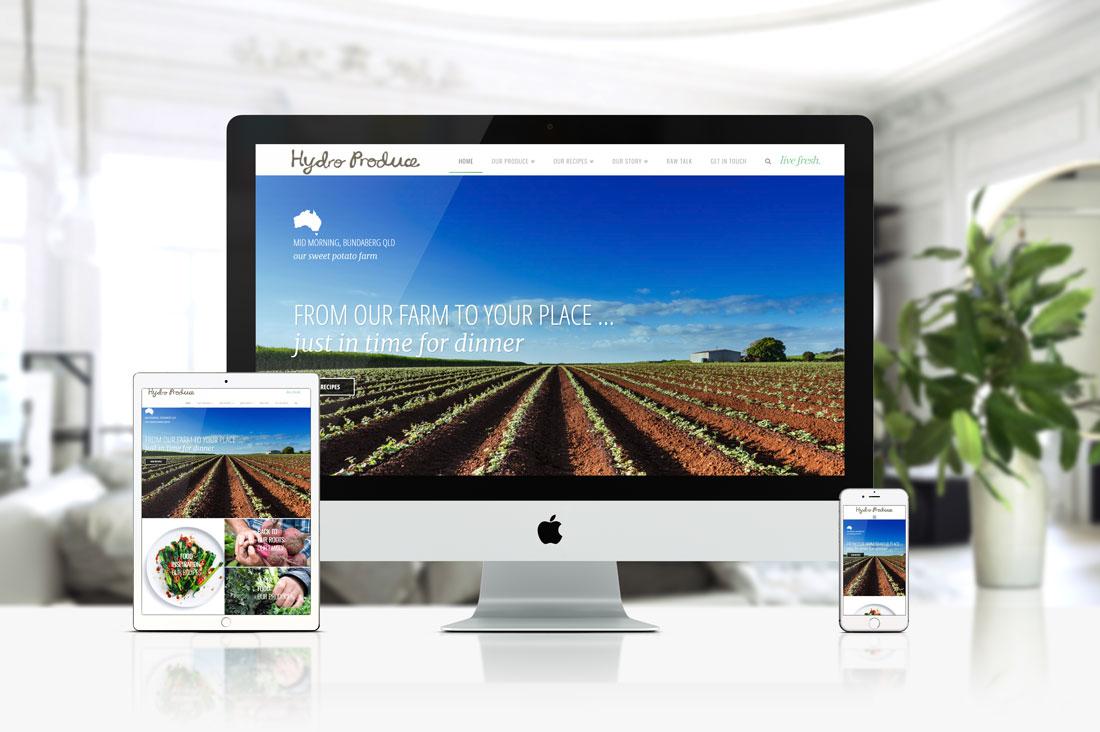 Hydro Produce - Design Counsel Brochure Web Project Showcasing Fresh Produce & Recipes.
